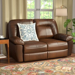Red Barrel Studio Bolles Reclining Loveseat