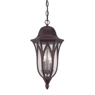 Savings Besaw 3-Light Hanging Lantern By Fleur De Lis Living