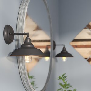 Alayna 1-Light Bath Sconce