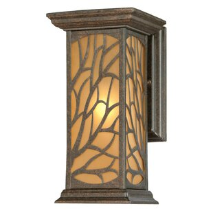 Elian 1-Light Outdoor Wall Lantern