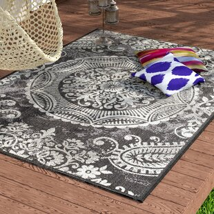 Gaskins Dark Gray Indoor Outdoor Area Rug