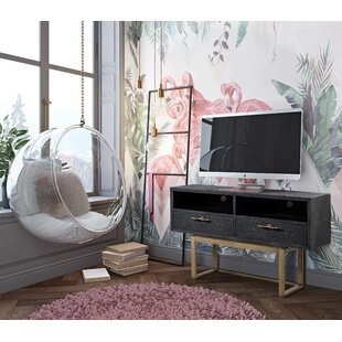 Vicki TV Stand by Ivy Bronx