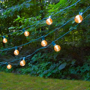 25 ft. 10-Light Globe String Light by The Party Aisle