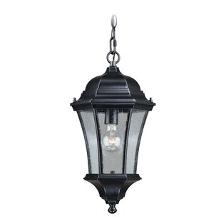 Reviews Carnanreagh 1-Light Outdoor Hanging Lantern By Astoria Grand