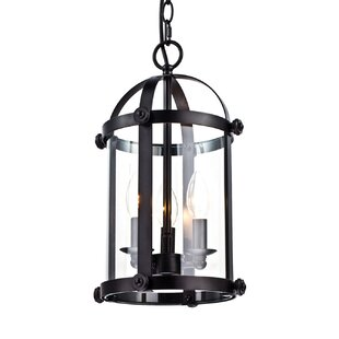 Slye Cage Foyer 3-Light Lantern Chandelie..
