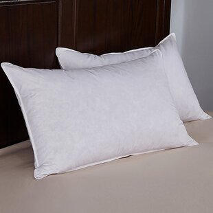 Alwyn Home Medium Firmness Down and Feathers Pillow (Set of 2)