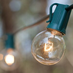 33-Light Globe String Lights