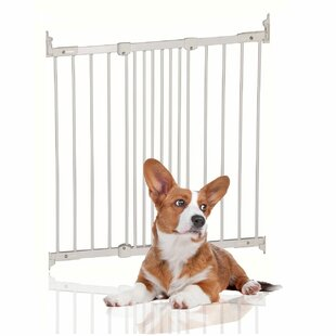 Basingstoke Wall Mounted Pet Gate by Archie & Oscar