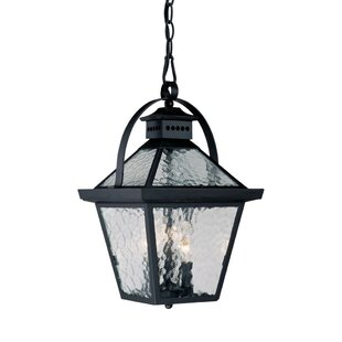 Darby Home Co Britton 3-Light Outdoor Hanging Lantern