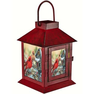 Jeffers Cardinals Metal Lantern