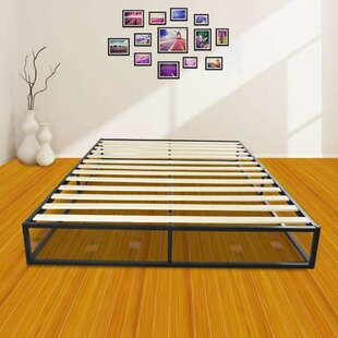 Hayward 10 Low Profile Heavy Duty Platform Bed