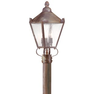 Theodore Classic 2-Light Lantern Head by Darby Home Co