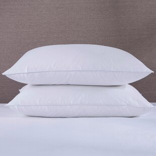 Jedidiah Soft Feather/Down Pillow (Set of 2)
