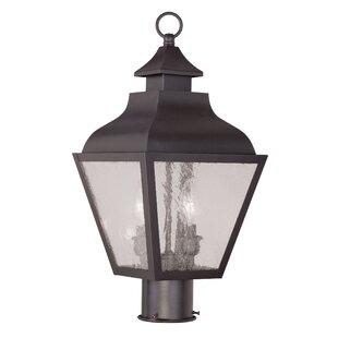 Santillo Outdoor 2-Light Lantern Head by Alcott Hill