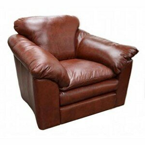 Oregon Leather Armchair Omnia Leather Seat Cushion Fill: Standard Cushion Fill, Body Fabric: Empire Chocolate