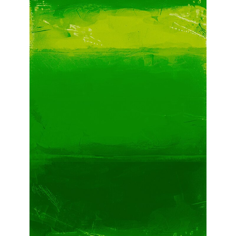Destefano 'Earth' Graphic Art on Wrapped Canvas in Green