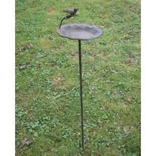 Robinett Bird Feeder By Sol 72 Outdoor
