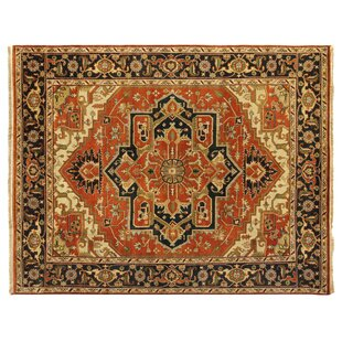 Top Reviews Serapi Hand-Knotted Wool Rust/Black Area Rug ByExquisite Rugs