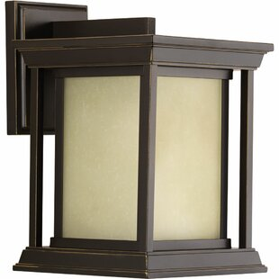Brayden Studio Zahn 1-Light Outdoor Wall Lantern