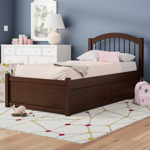 Matt Twin XL Panel Bed with Drawers by Viv + Rae