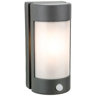 Byrnes Outdoor Flush Mount By Sol 72 Outdoor