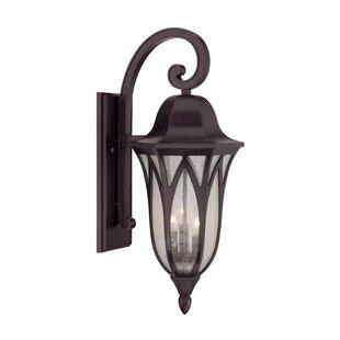 Fleur De Lis Living Besaw 3-Light Outdoor Wall Lantern