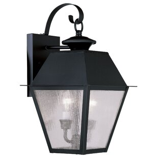 Cynda 2-Light Outdoor Wall Lantern
