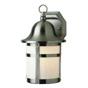 Seaport 1-Light Outdoor Wall Lantern
