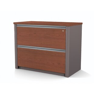 Latitude Run Karla 2-Drawer File