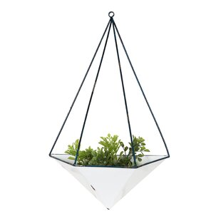 Clinton Decorative Geometric Metal Hanging Planter by Wrought Studio