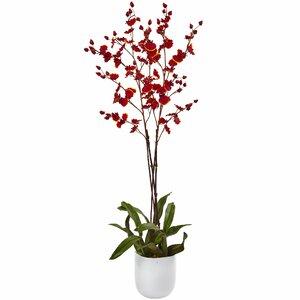 Dancing Orchid Vase