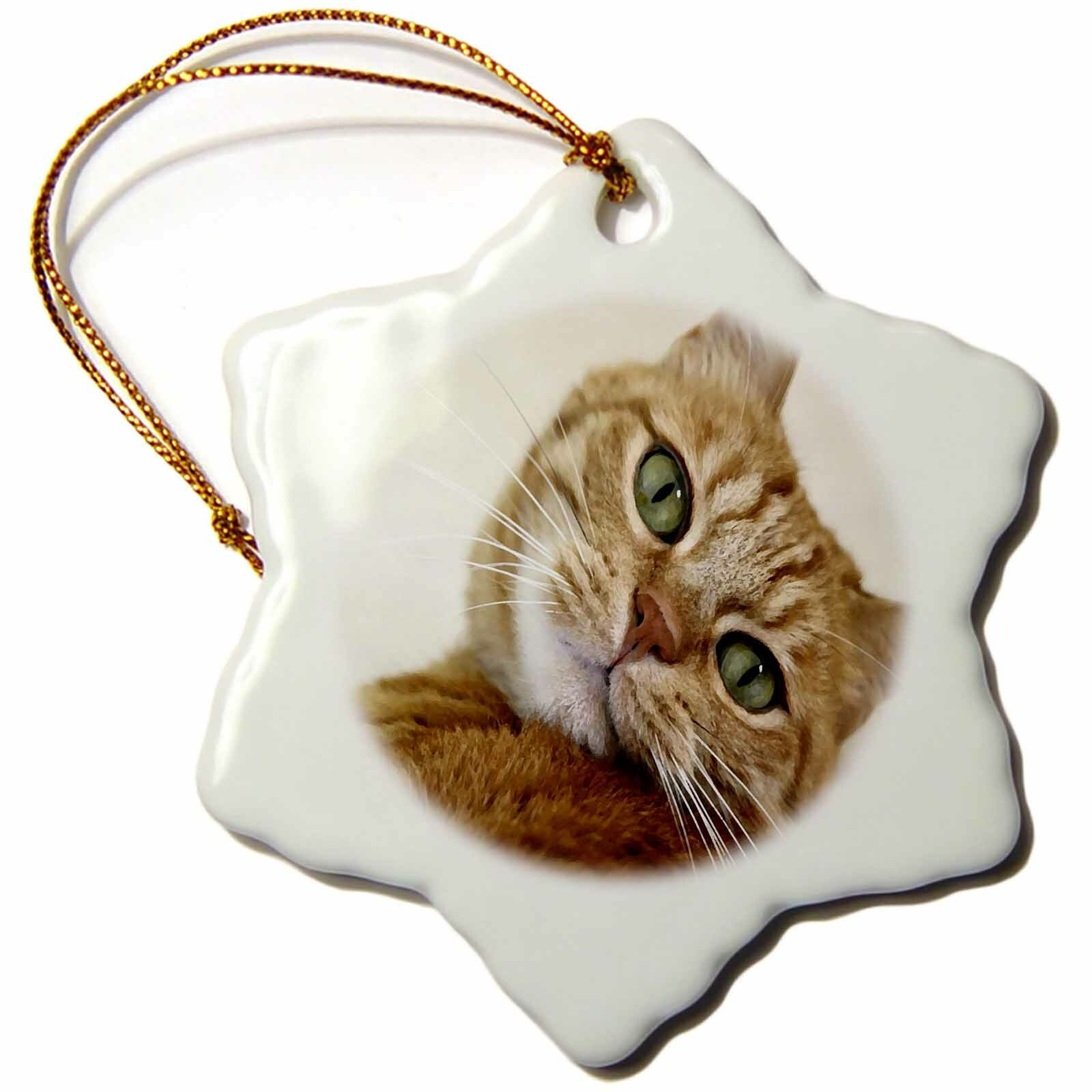 The Holiday Aisle Print Of Tabby Cat Painting Snowflake Holiday Shaped Ornament Wayfair