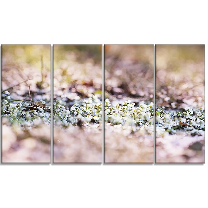 Designart Little White And Pink Flowers 4 Piece Photographic Print On Wrapped Canvas Set Wayfair