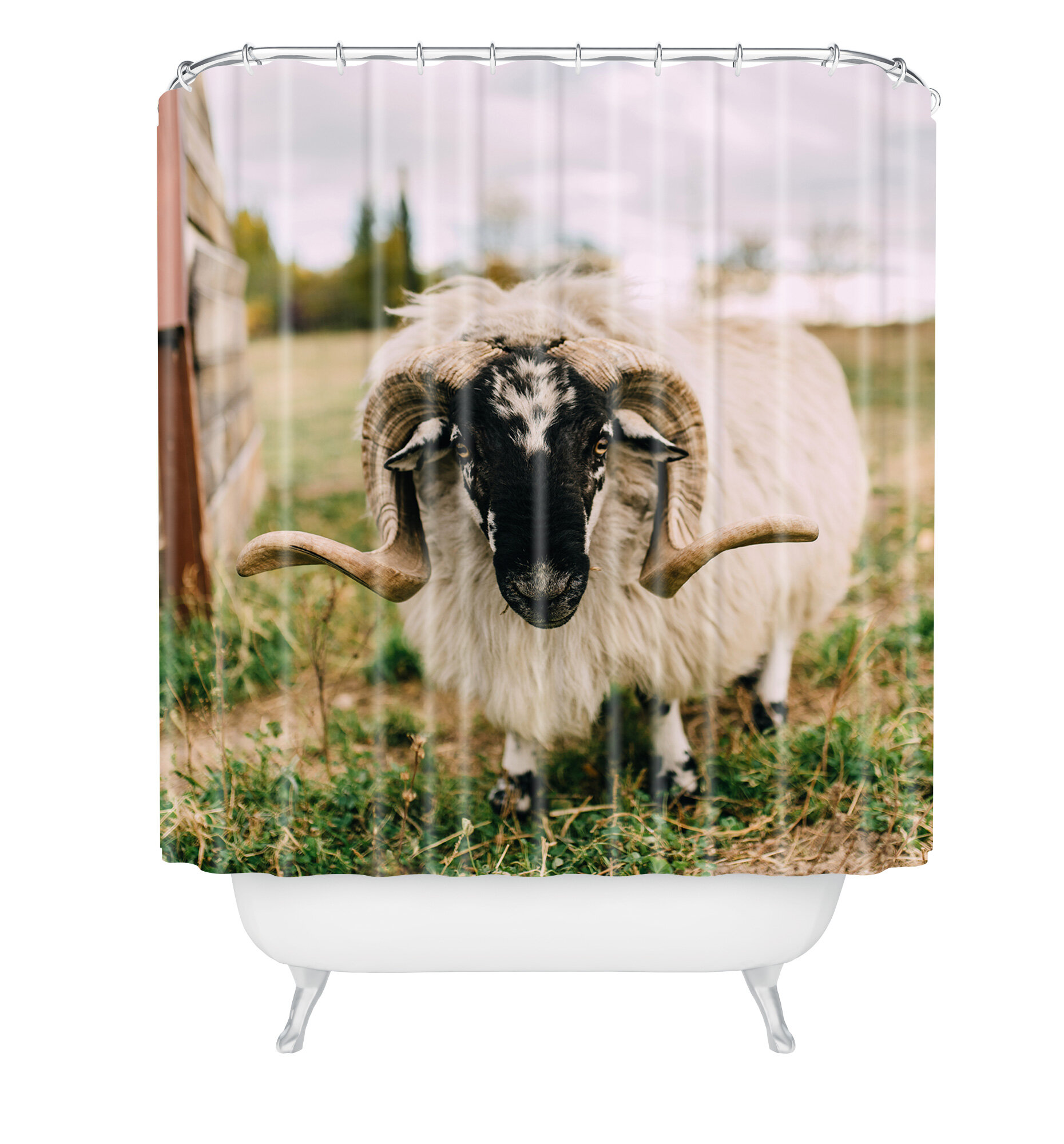 East Urban Home Chelsea Victoria The Curious Sheep Shower Curtain