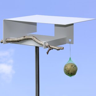 Futterstation Decorative Bird Feeder By Sol 72 Outdoor