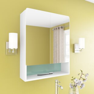 Ingrassia 24 x 30 Surface Mount Medicine Cabinet by Orren Ellis