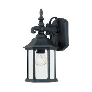 Castellanos 1-Light Outdoor Wall Lantern