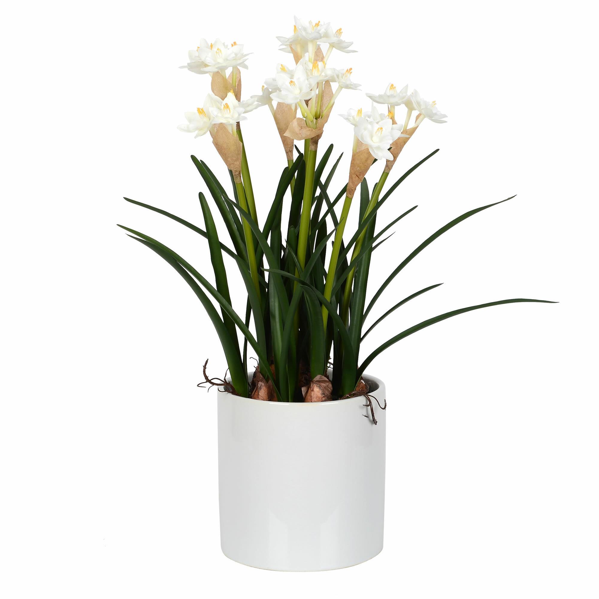 Rosalind Wheeler Daffodil Floral Arrangements And Centerpieces In Pot Wayfair