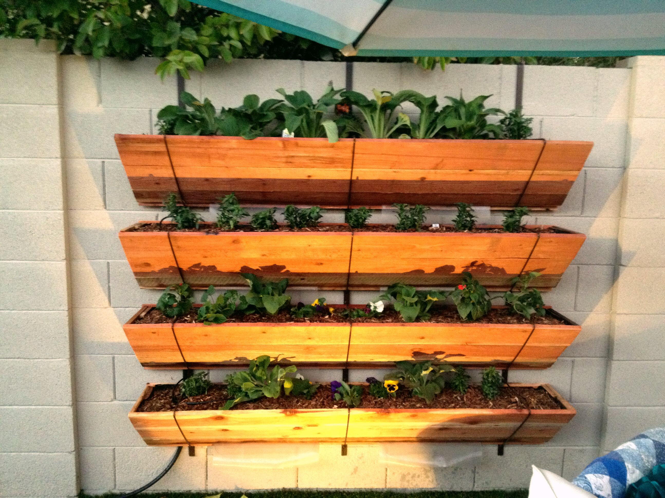 Tejeda 10 Tier Self-Watering Wood Vertical Garden