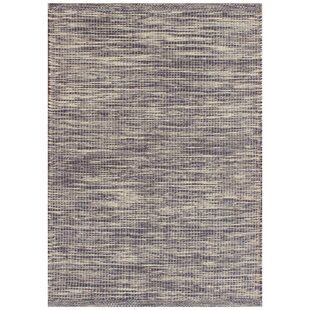 Boerner Hand-Woven Navy Indoor/Outdoor Area Rug