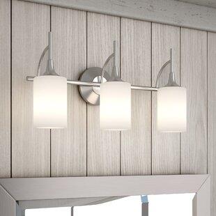 Alcott Hill Foland 3-Light Vanity Light