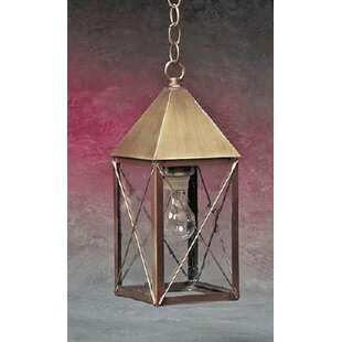 Best Choices Michaela 1-Light Outdoor Hanging Lantern By Longshore Tides