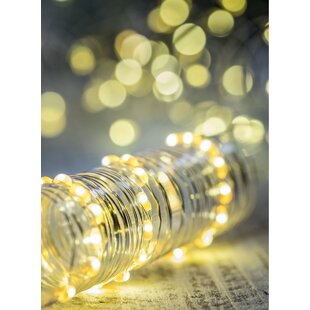 Capuano Decorative 1.5 ft. 36-Light Fairy String Light