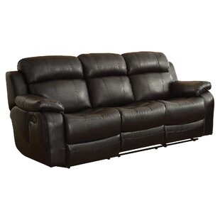 Darby Home Co Hall Double Reclining Sofa