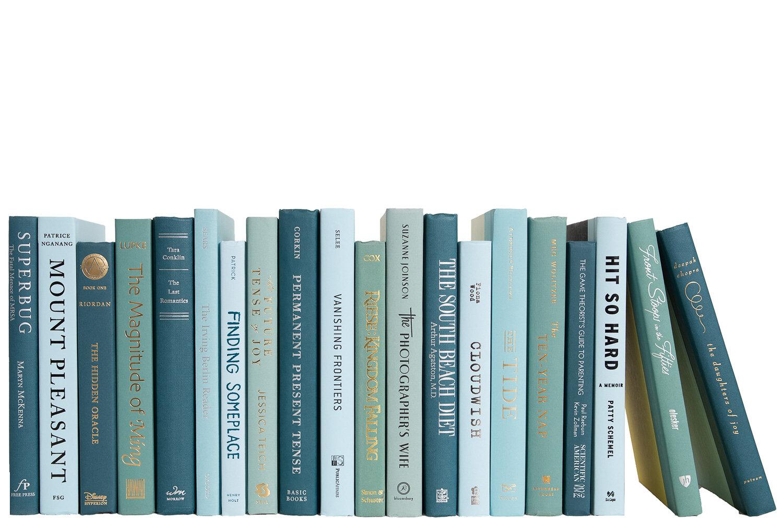 Booth Williams 20 Piece Authentic Decorative Books Set Wayfair