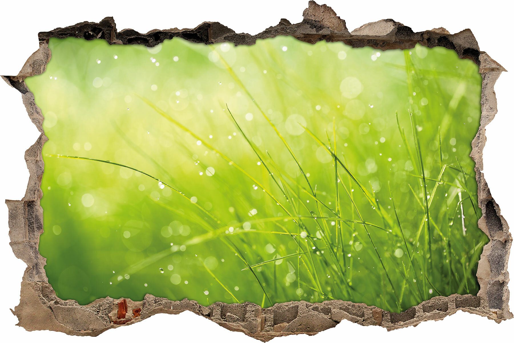 Faszinierend Wandtattoo Gras Galerie Von