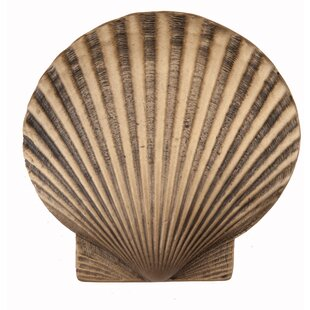 Large Scallop Novelty Knob