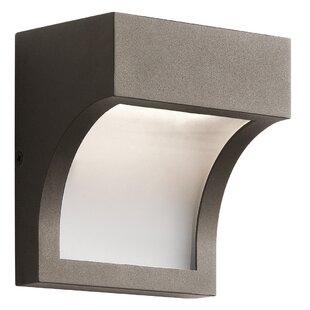 Orren Ellis Dacey 1-Light Outdoor Flush Mount