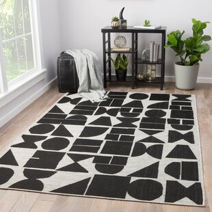 Jet Black Indoor/Outdoor Area Rug
