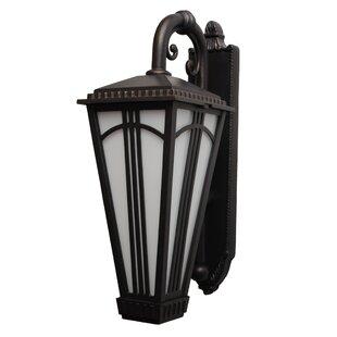 Alcott Hill Petrey 2-Light Outdoor Wall Lantern